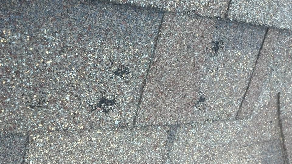 Typical Hail Damage to Shingles